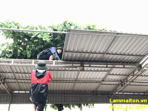 Hình Ảnh Thợ Làm Mái Tôn Tại Hà Đông chuyên nghiệp