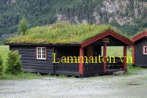 Hệ thống cây xanh là cách để chống nóng mái tôn